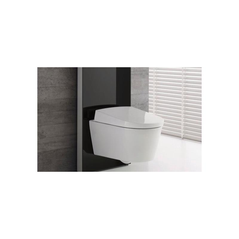geberit aquaclean aqua clean sela komplettanlage up wand. Black Bedroom Furniture Sets. Home Design Ideas